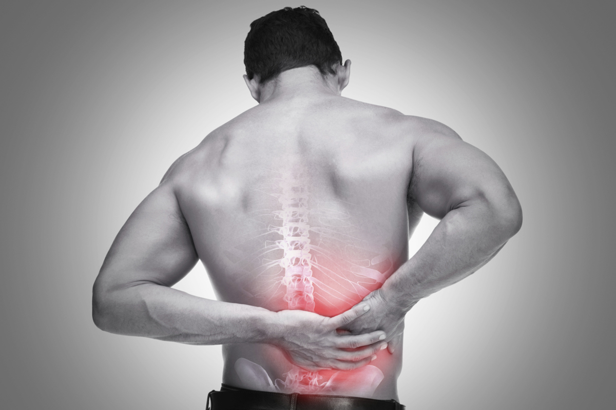 Chiropractic Adjustments For Your Back Pain